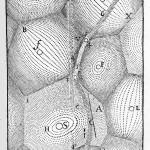 Les tourbillons de Descartes, d'après ses Principia philosophiae (1644)